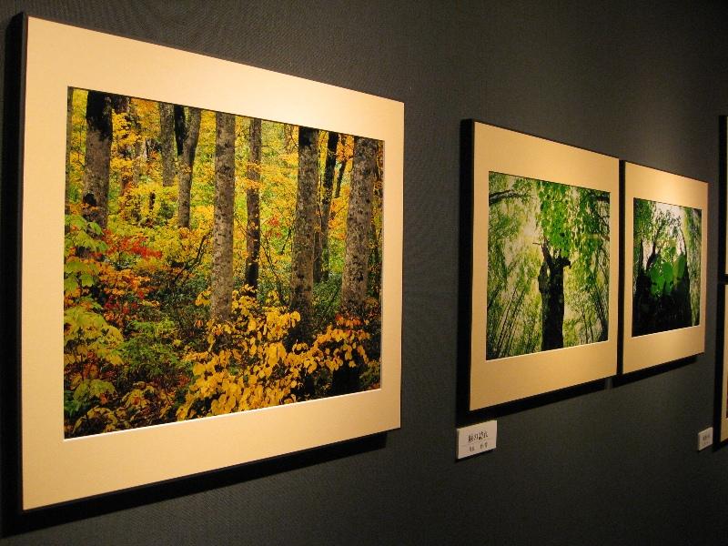 ネイチャーフォト「青」の会 第29回 写真展「自然からのメッセージ」