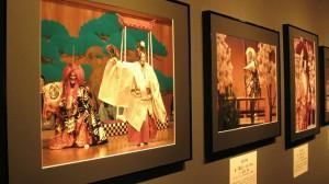 創立10周年記念 能楽写真家協会写真展「能 花への誘い」