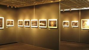 仙葉烈写真展「おしどり百景」2