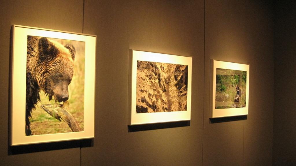 太田達也 写真展「Kamuy 神々の鼓動」