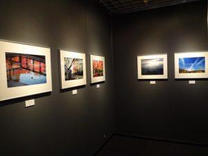写遊東京自然写真塾写真展 「人と自然への愛 第10回展」no.04~_フォトギャラリー「シリウス」